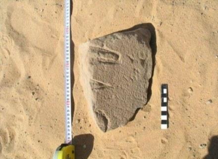Eksperci przez 7 lat analizowali wykonany 5 tys. 250 lat temu najstarszy zabytek egipskiego pisma mó /MWMedia