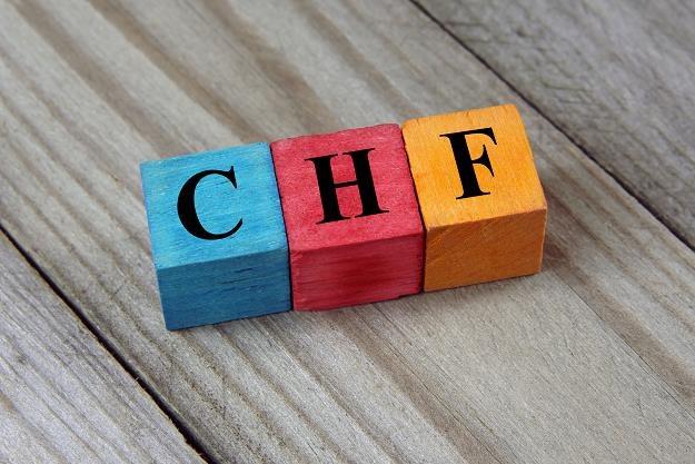 Eksperci przygotwali nową propozycję rozwiązania problemu kredytów walutowych /©123RF/PICSEL