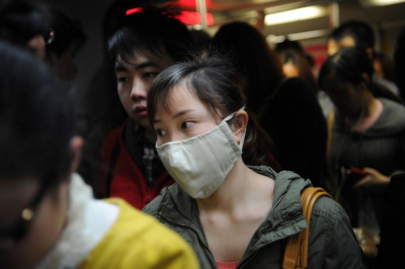 Eksperci z ECDC ostrzegają przed ptasią grypą w Azji /AFP