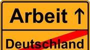 """Ekspert ostrzega przed skutkami """"drenażu mózgów"""" ze strony Niemiec"""
