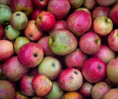 Eksport jabłek na wschód maleje, a ceny spadają