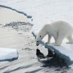 Ekstremalnie małe szanse, że do ocieplenia klimatu doszło bez udziału człowieka
