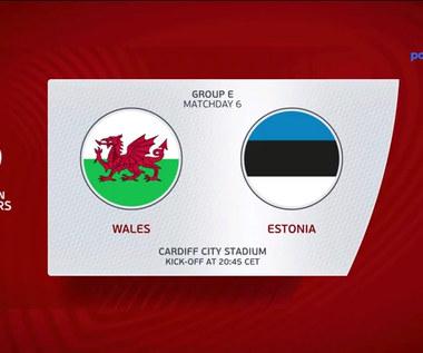 EL. MŚ 2022. Walia - Estonia 0-0. Skrót meczu (POLST SPORT). Wideo