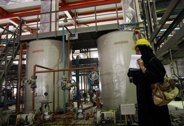 Elektrownia atomowa w Iranie /AFP