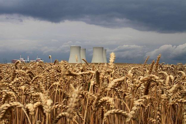 Elektrownie - w Dukovanach i w Temelinie - dostarczają jedną trzecią całej energii w Czechach /AFP