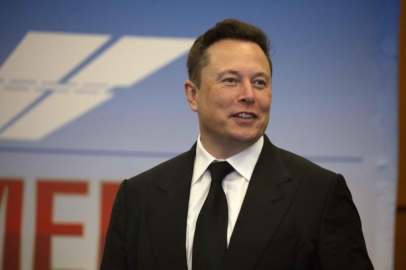 Elon Musk szuka inżynierów do Neuralink /AFP