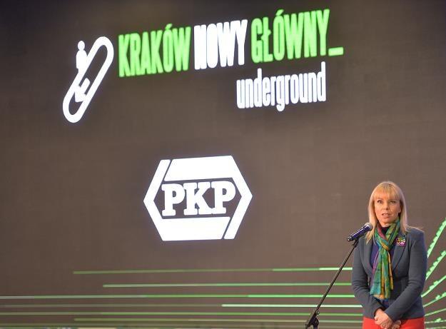 Elżbieta Bieńkowska: - Ten dworzec jest jednym z elementów morza inwestycji... /PAP
