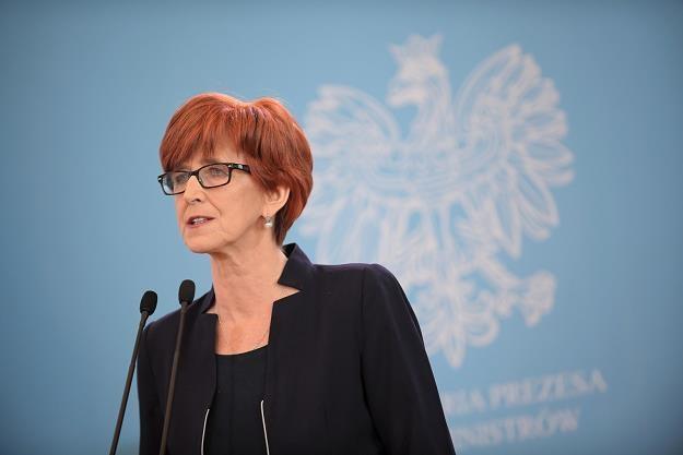 Elżbieta Rafalska /fot. Marcin Obara /PAP
