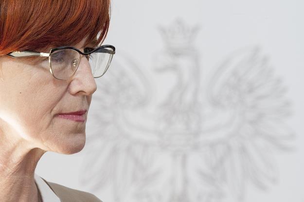 Elzbieta Rafalska /fot. Wojciech Strozyk /Reporter