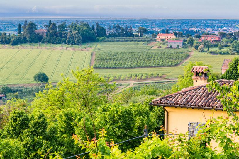 Emilia Romagna jest gotowa na przyjęcie gości i zapewnienie im bezpieczeństwa /123RF/PICSEL