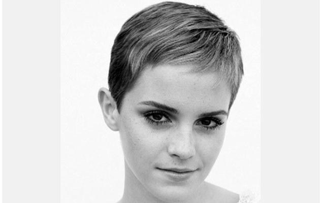 Emma Watson  /Splashnews
