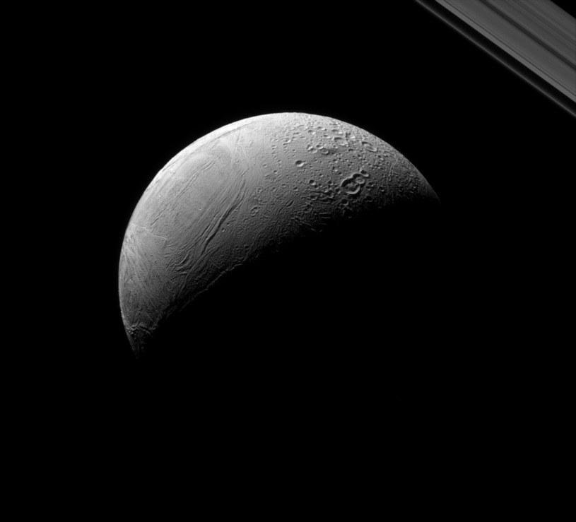 Enceladus widziany z sondy Cassini /NASA