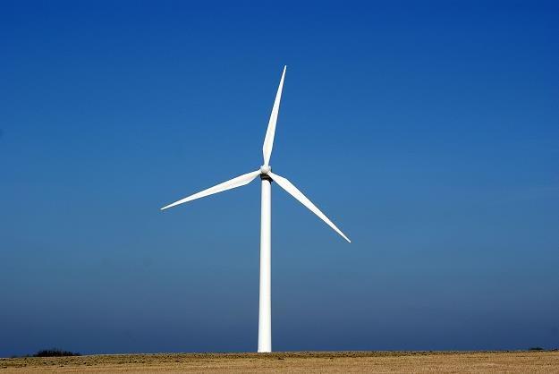 Energia wiatrowa zasili browary /©123RF/PICSEL