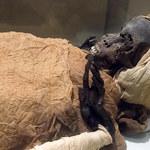 Enigmatyczna śmierć Sekenenre Tao. Zagadka faraona rozwiązana