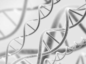 Enzym służący do naprawy DNA jednak szkodzi?