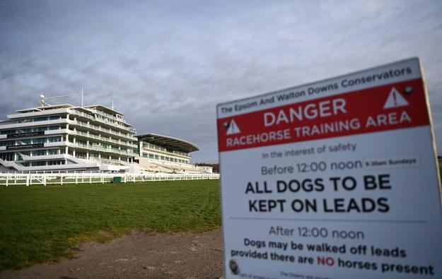 Epsom Racecourse, proponowany ośrodek szczepień w Epsom w Wielkiej Brytanii / ANDY RAIN    /PAP/EPA