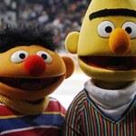 Ernie i Bert nie są gejami!