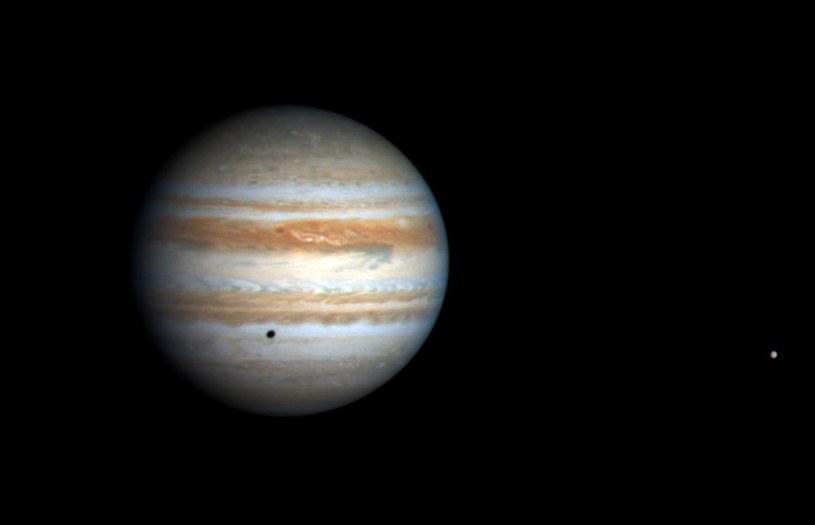 ESA będzie szukać życia wśród księżyców Jowisza /AFP