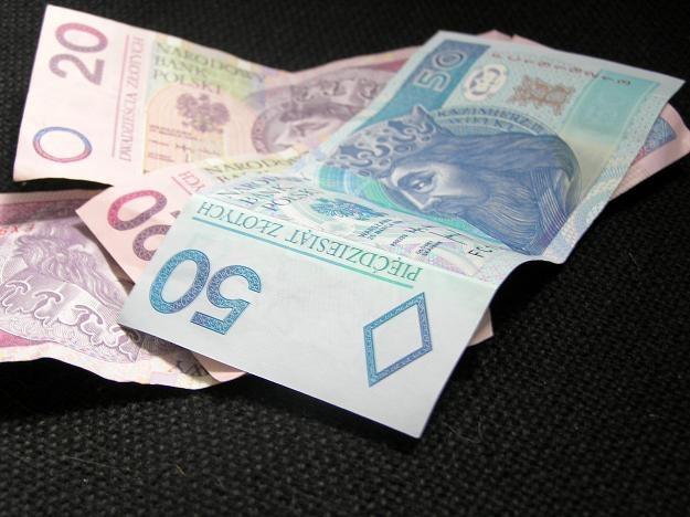 EUR/PLN może w piątek znaleźć się znacznie wyżej, dojść do 4,45-4,48 /INTERIA.PL