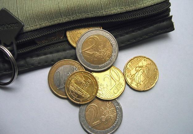 Euro po 4,10 zł kupimy jeszcze w tym tygodniu? /© Bauer
