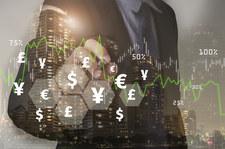 Euro stabilne, dolar czeka na impuls. Frank i korona szwedzka zagrożone przez politykę pieniężną