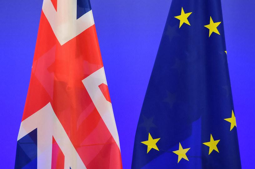 Europejczycy chcą pozostania Wielkiej Brytanii w Unii Europejskiej /EMMANUEL DUNAND / AFP  /AFP