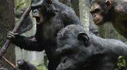 """""""Ewolucja planety małp"""": Małpy przejmują władzę"""