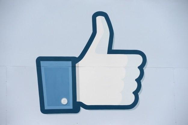Facebook coraz poważniej myśli o działalności reklamowej /AFP