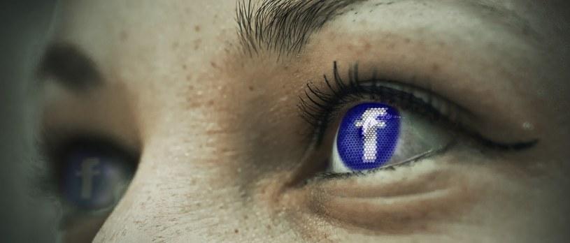 Facebook jest dla niektórych drugim życiem /pixabay.com /Internet