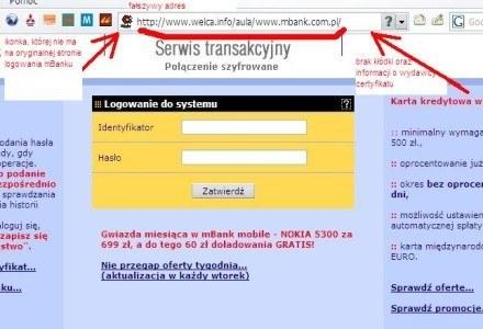 Fałszywa strona do logowania w mBanku. /Źródło: Dziennik Internautów