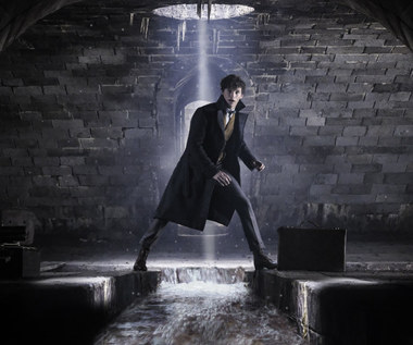 """""""Fantastyczne zwierzęta"""": Newt Scamander wraca do kin w listopadzie"""