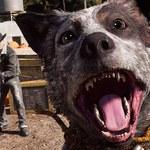 Far Cry 5 wzbogacił się o tryb fotograficzny