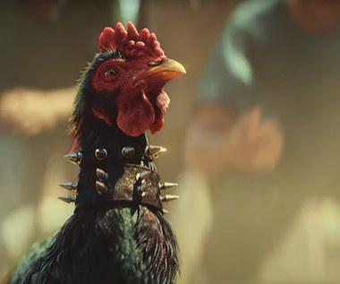 Far Cry 6: Organizacja PETA chce usunięcia walk kogutów