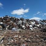 Farma miejska na nieczynnym wysypisku śmieci