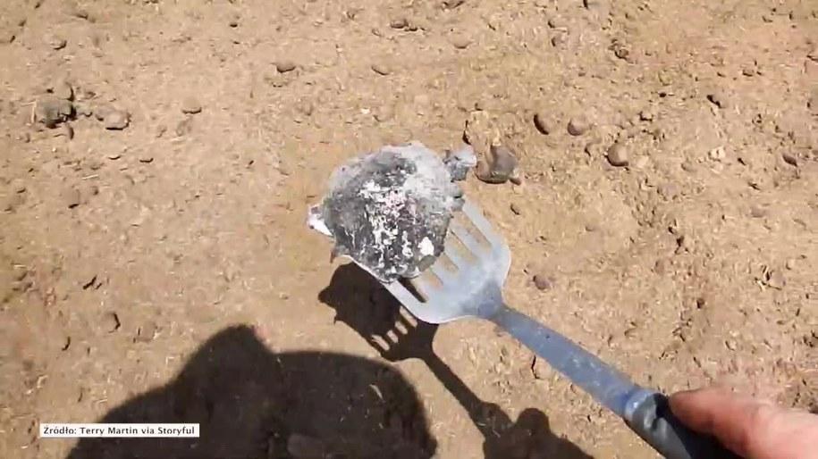 Farmer z Australii usmażył jajko na dymiącej ziemi /Storyful/x-news