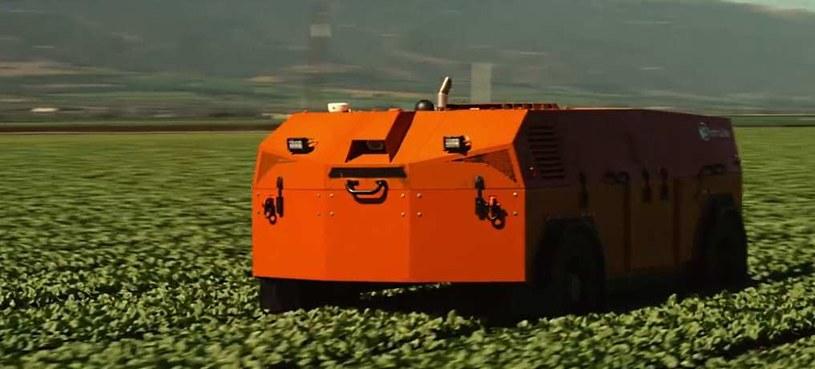 FarmWise - zautomatyzowany sposób do walki z chwastami /materiały prasowe