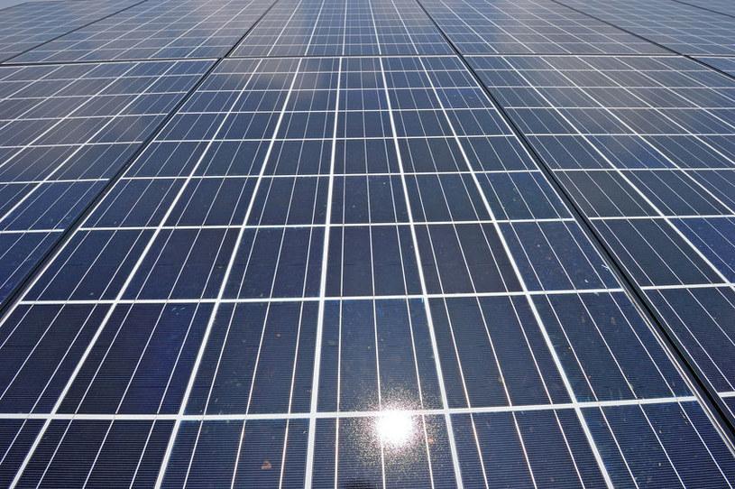Farmy słoneczne powinny powstawać tylko w miejscach już przejętych od przyrody /123RF/PICSEL