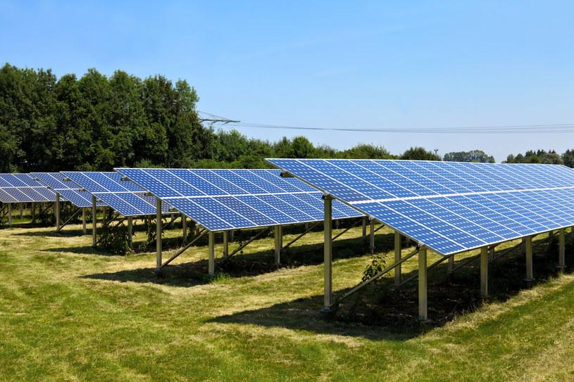 Farmy słoneczne utknęły w sieci. /123RF/PICSEL