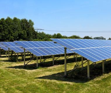 Farmy słoneczne utknęły w sieci