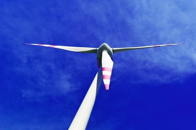 Farmy wiatrowe w Polsce zagrożone przez plany rządu /©123RF/PICSEL