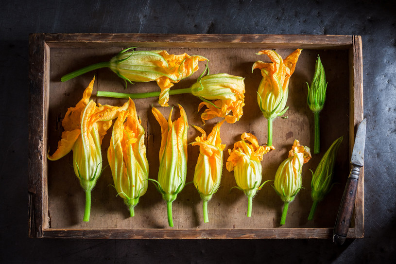 Faszerowane kwiaty cukinii to prawdziwy przysmak /123RF/PICSEL