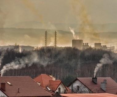 Fatalna jakość powietrza w Polsce. Przekroczone normy
