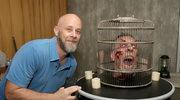"""""""Fear the Walking Dead"""": """"Ten świat jest pełen brutalności - Dave Erickson o najnowszym sezonie"""
