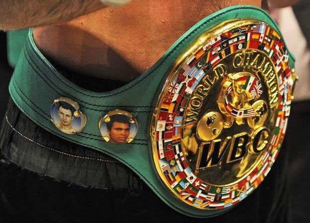 Federacja WBC zamierza karać oszustów /AFP