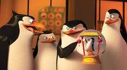 """Fenomen """"Pingwinów z Madagaskaru"""""""