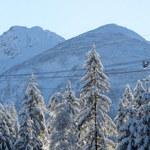 Ferie w kolejnych województwach. Tatrzańskie szlaki zapełniają się turystami