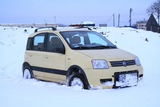 Fiat panda 4x4 /INTERIA.PL