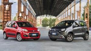 Fiat Panda MY2017 - co zaoferuje?