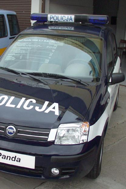 Fiat proponował policji także pandy / kliknij /INTERIA.PL