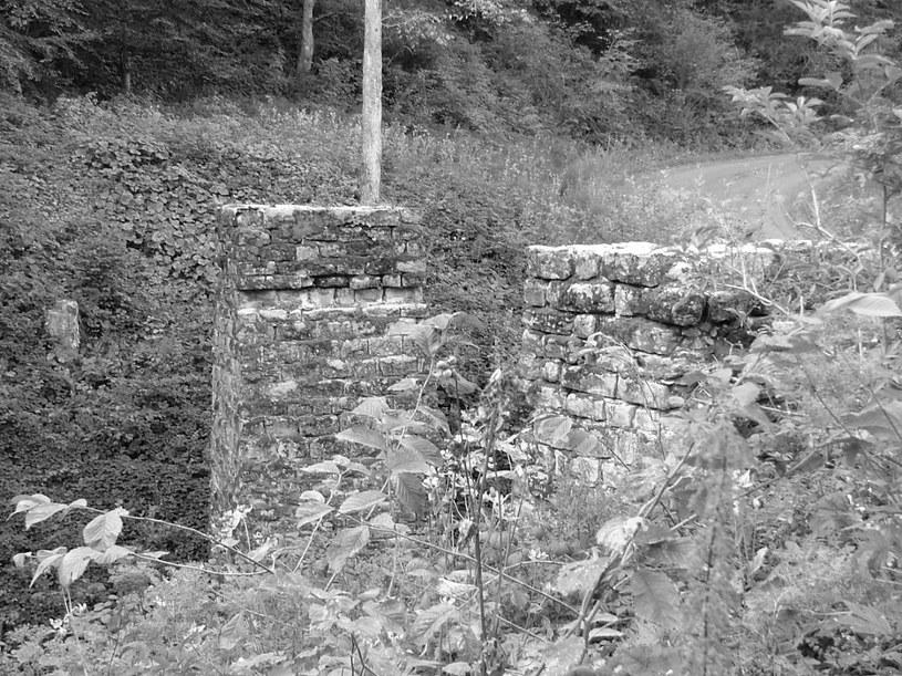 Filary mostu kolejki wąskotorowej, zachowane przy drodze z Mucznego do Tarnawy Niżnej /Waldemar Bałda /INTERIA.PL